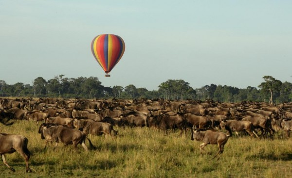 The Great Migration, Africa