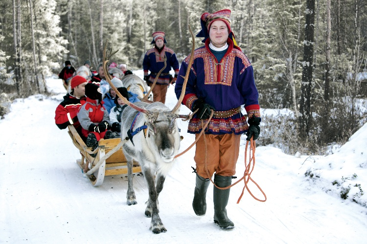 Reindeer sleigh ride in Lapland