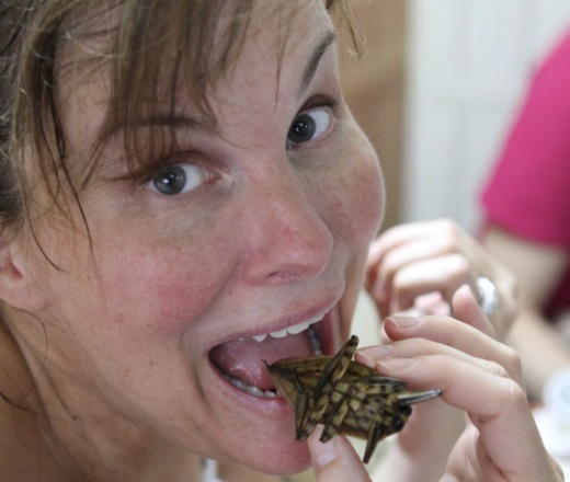 Swap Michelin Stars For Grasshoppers On A Food Adventure