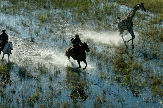Aardvark Safaris, riding in th