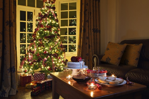Festive breaks at Garden Apartment