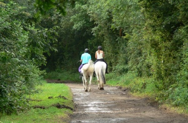 Horse riding - credit geograph.org.uk