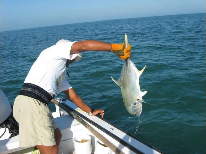 Catch and release fishing in Belize