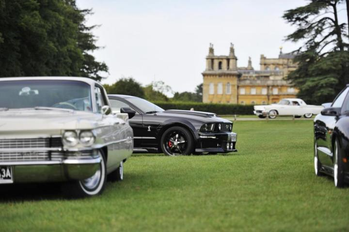 Blenheim car show