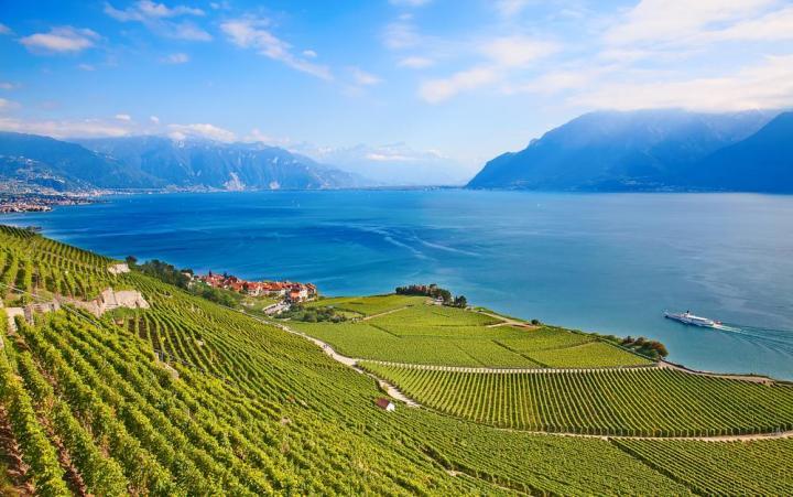 European wine region