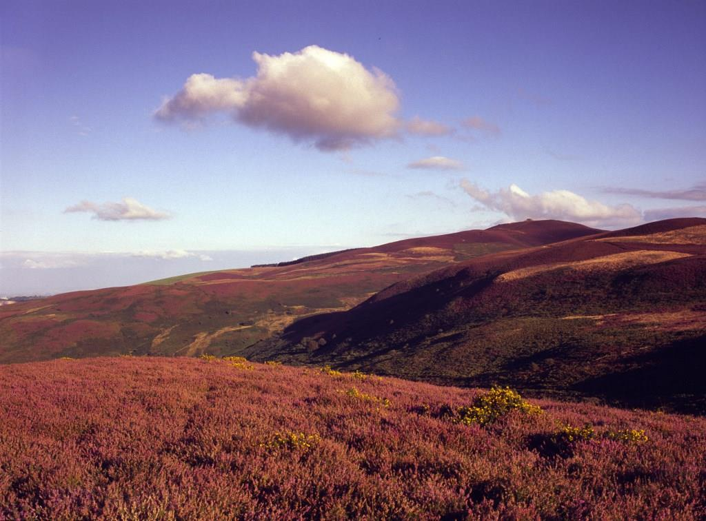 Clwydian Range Area of Outstanding Natural Beauty, North East Wales