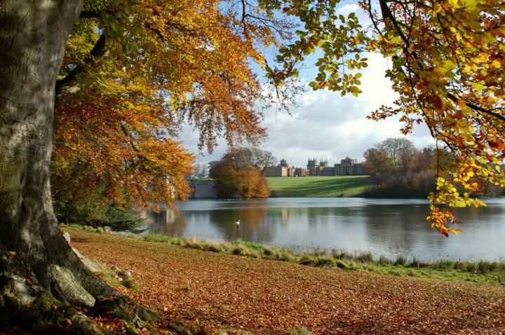 Autumn Colours at Blenheim Palace
