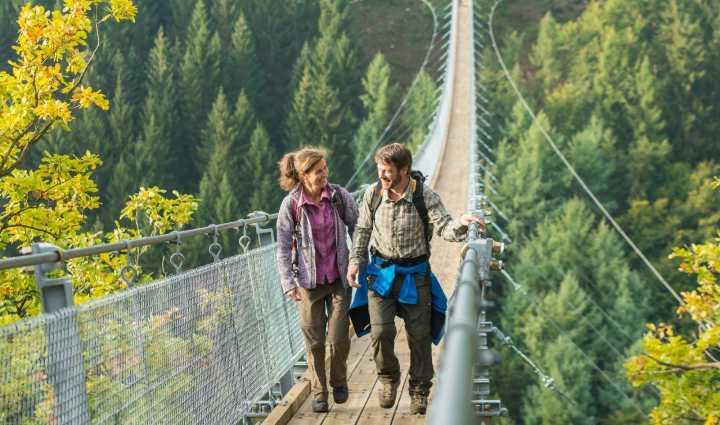 Hikers on Geierlay rope suspension bridge, Germany